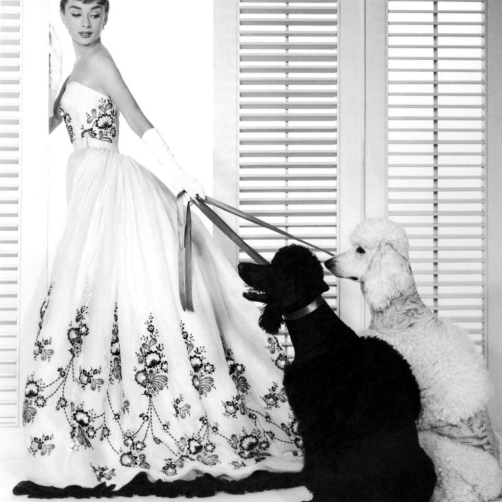 La actriz vestida de Givenchy, unión que duró para siempre. Amazon