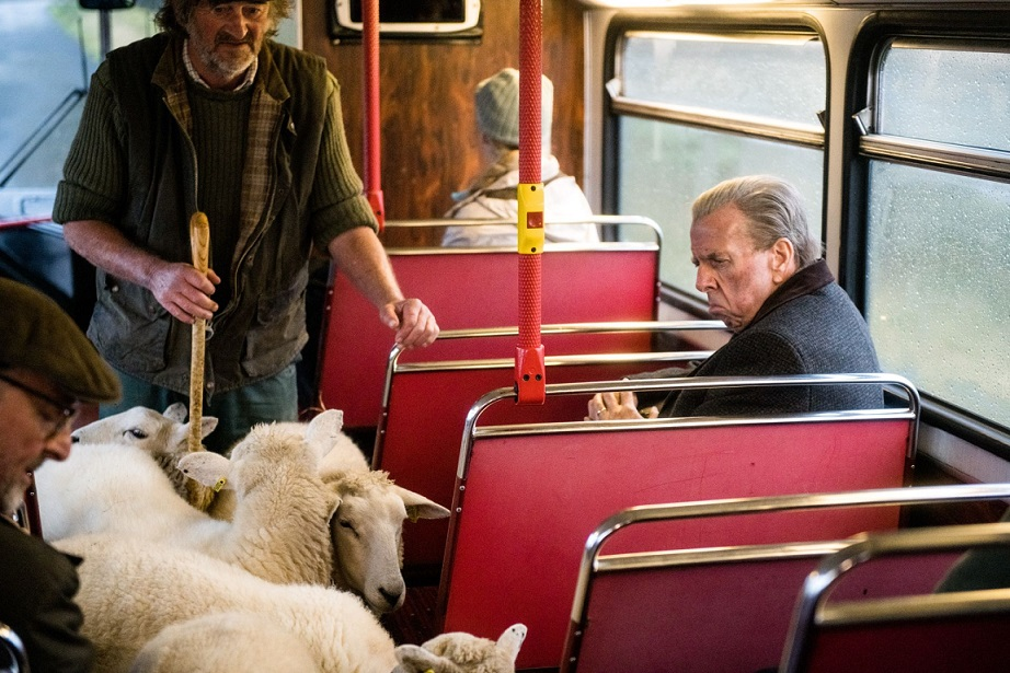 En cada sitio el transporte público tiene sus particularidades. DEAPLANETA