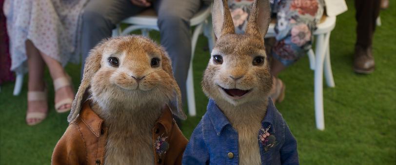 La boda de Bea y Thomas. Peter Rabbit 2: A la fuga. SONY
